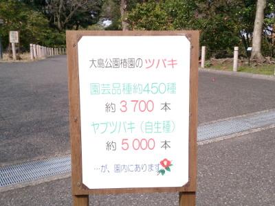 130313_11.jpg